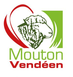 OES de la race Mouton Vendéen en France