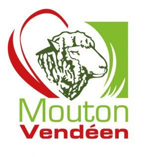 OES de la race Mouton Vendéen en France
